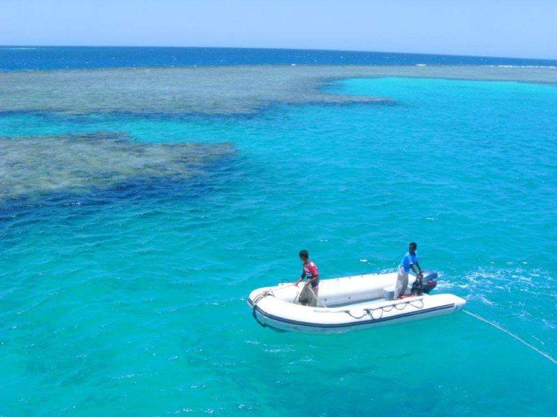 Röda havet med sina många korallrev