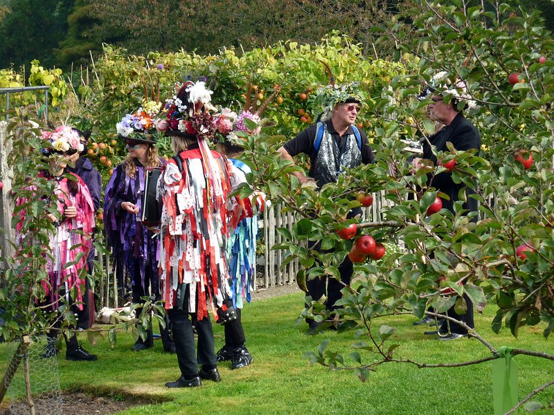 RHS Rosemoor, 40 minutes away, is open all year round. Special events include Apple Tree Day.