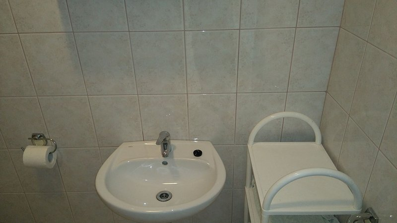 A1(4): bathroom with toilet