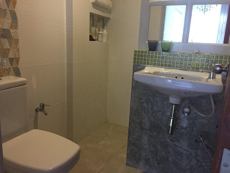 Il design del bagno retrò, bagno.