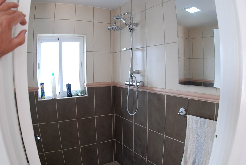 Single wet room with WC