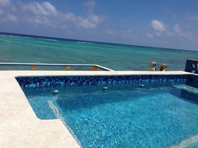 Villa de lujo incluye el cocinero con la azotea piscina de inmersión y mucho más !!!