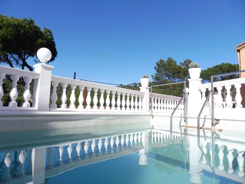 Der Pool (6m x4m)