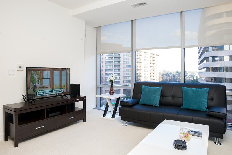 Heaven in Arlington Fully Furnished 2 Bedroom Apartments, holiday rental in Arlington