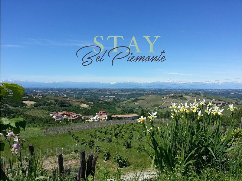 Affitacamere Stay Bel Piemonte, holiday rental in Dogliani