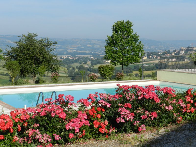 Nice apt with pool access & balcony, vacation rental in Grutti
