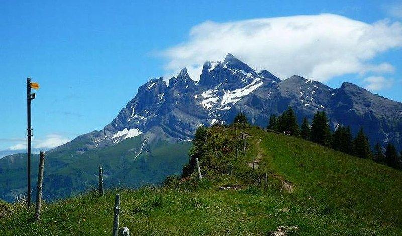 promenades fantastiques d'été et le VTT dans les montagnes