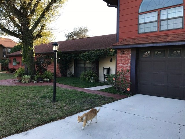 Beautiful 4 Bd Pool Home!, holiday rental in Trinity
