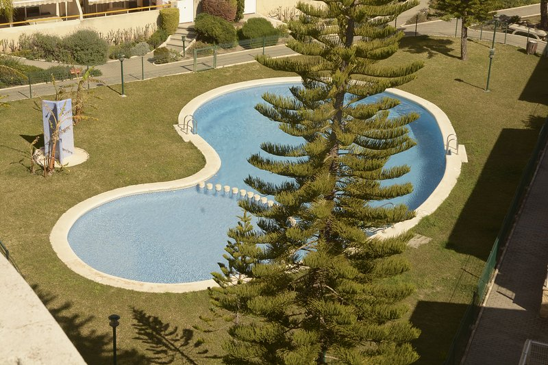 Spacious apartment with shared pool, vacation rental in Alfauir