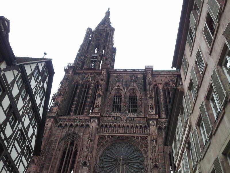 L'impressionnante cathedrale de Strasbourg à 35 mn du gîte.