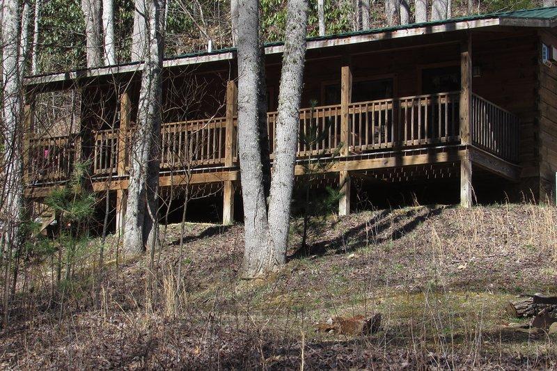 La cabina Sundance è immerso nella foresta.