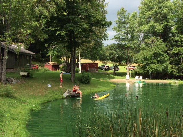 Catgalu, privacy and swimming pond, aluguéis de temporada em New Kingston