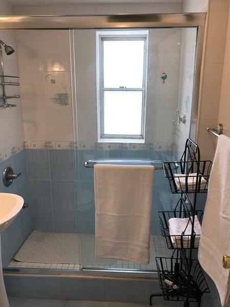 Luce e arioso bagno è dotato di comoda passeggiata in doccia