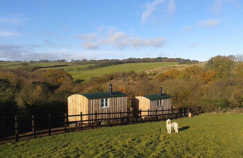 Aconchegar-se na nossa Shepherds Hut - Leap do cervo (foto à direita)