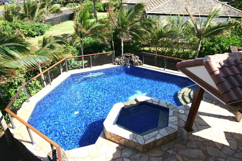 piscine chaude avec des tortues et des dauphins en mosaïque, vue depuis le salon