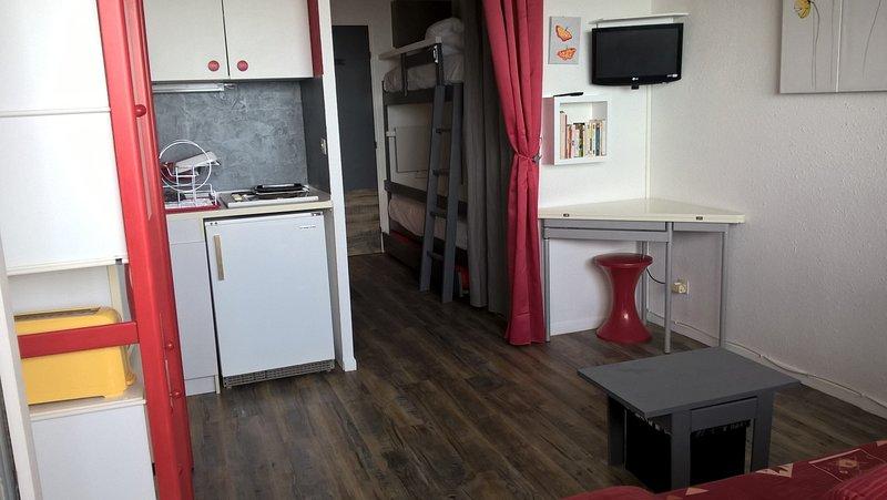 Studio pieds de pistes station été-hiver pour  4 personnes +1 appoint, holiday rental in Vebre