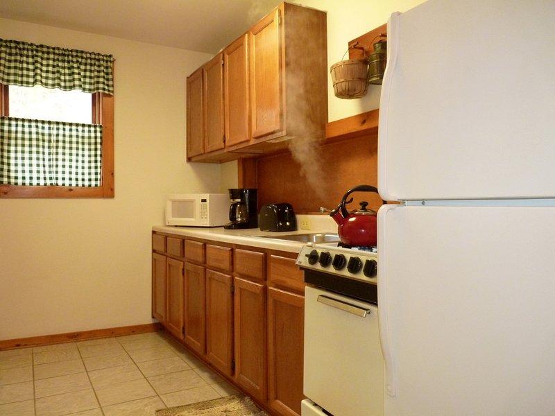Notre cuisine complète a tout ce que vous avez besoin pour la préparation de repas ... Voilà, tout sauf les aliments