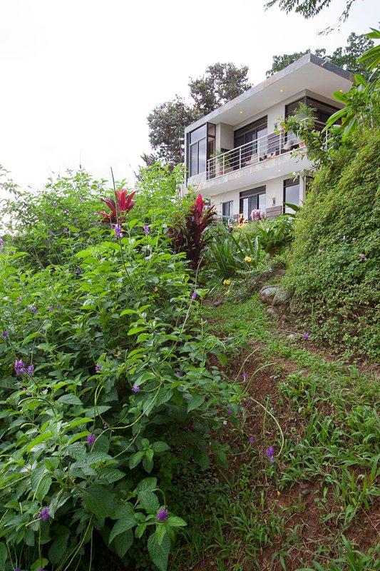 La casa está rodeada por la naturaleza