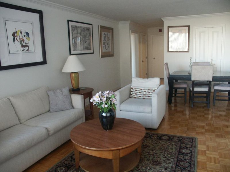 Incredible 1br Luxury Condo - Charlesview Suites, vacation rental in Boston