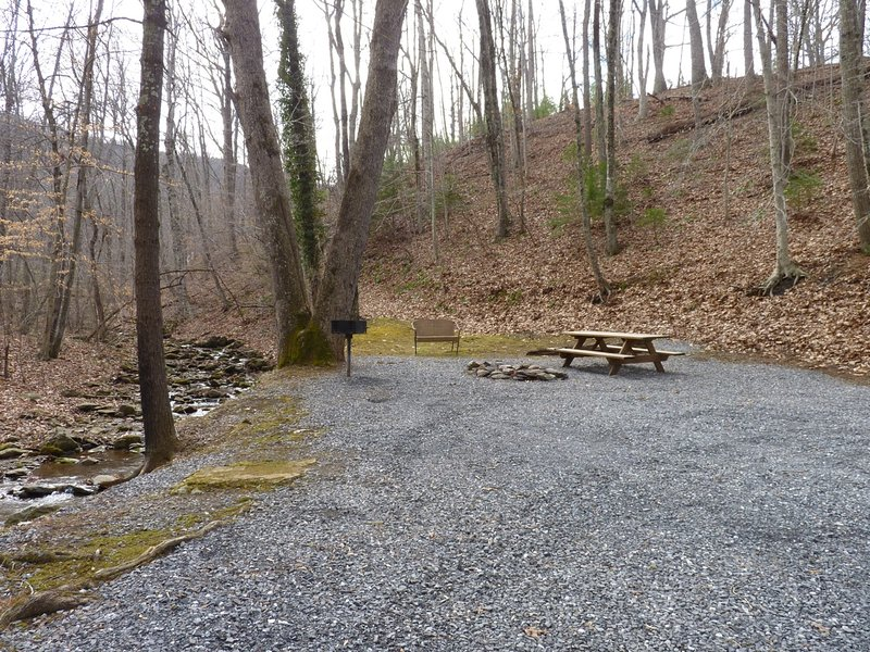 A Lovely Picnic Area by the Creek, Complete w/ Grill, Fire Pit, Picnic Table, and Love Seat