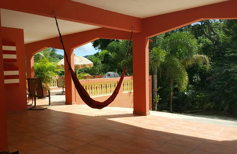 Three hammocks on the property for you to enjoy!
