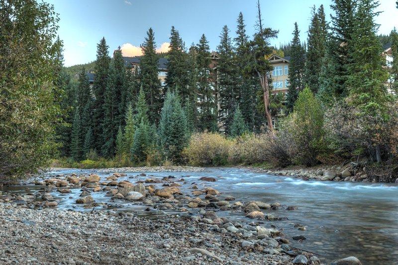 Fir,Creek,Outdoors,River,Water
