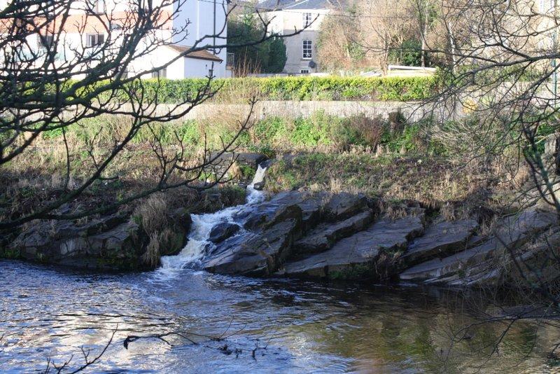 río cuscuta