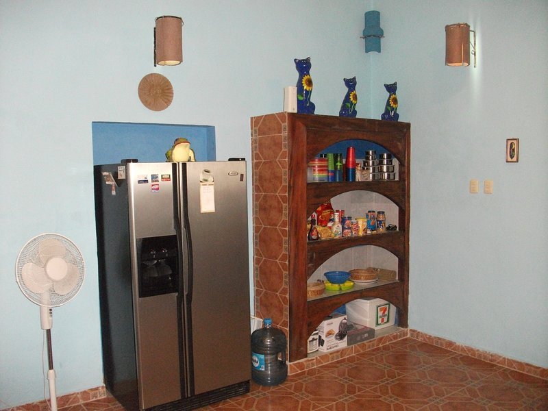 Large Refrigerator and Pantry in the Kitchen