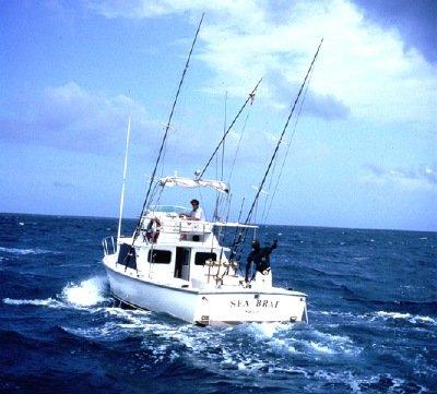 Les capitaines savent où les vraiment très gros poissons sont dans le golfe du Mexique
