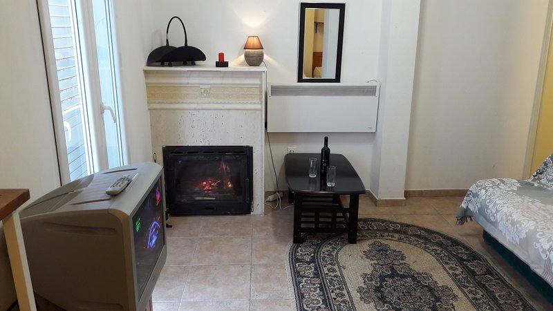 Hotel Style apartments Villa with swimming pool at Adriatic sea, vacation rental in Budva Municipality