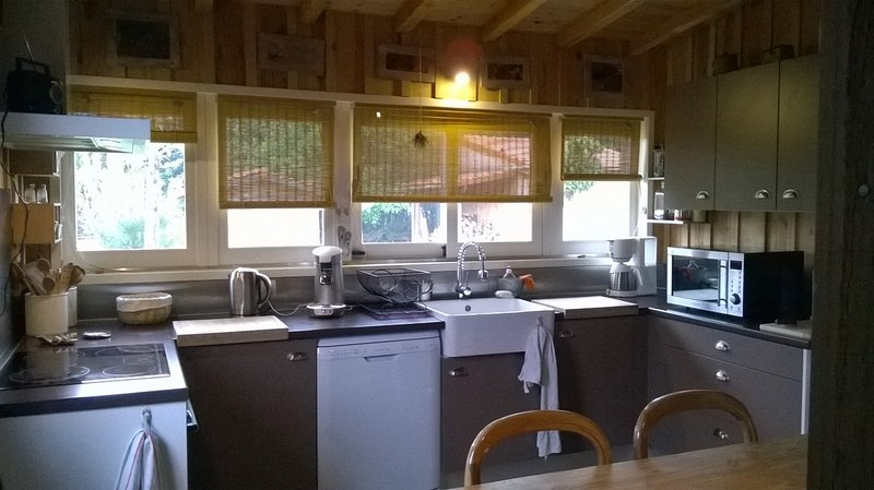 Cabane en bois du Bassin, vacation rental in Claouey