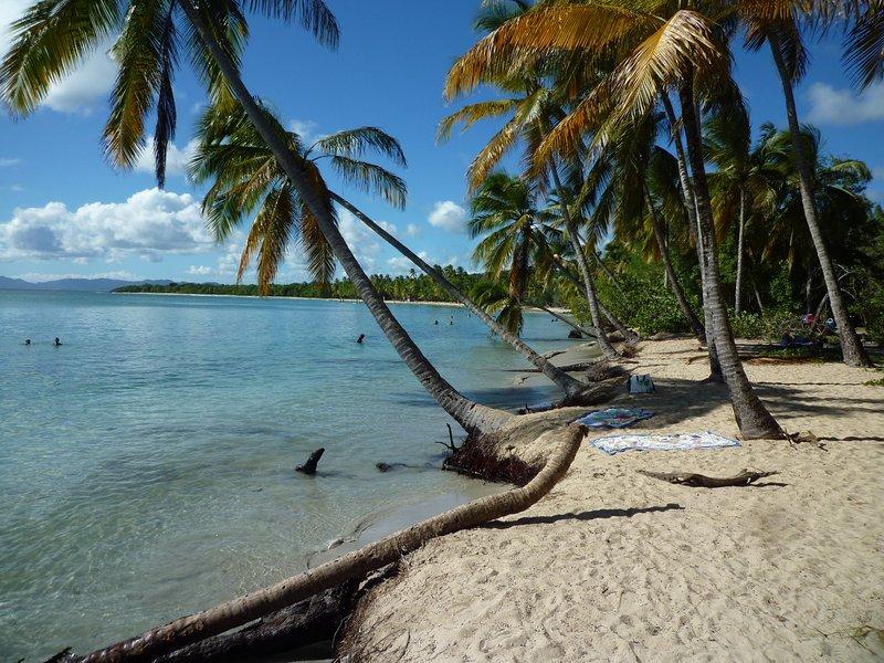 playa Salines, una necesidad ...