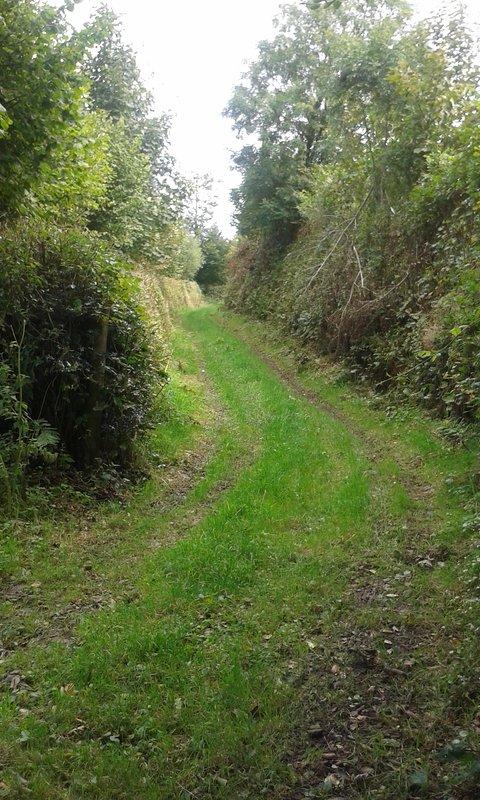 via verde de Hartsmead que leva para moorland aberto em apenas 5 minutos