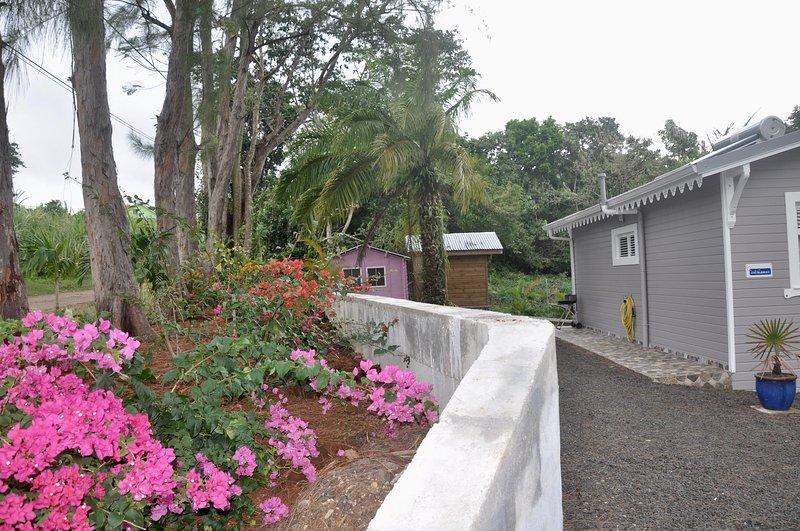 Villa Wodyetia, location de vacances à Riviere-Pilote