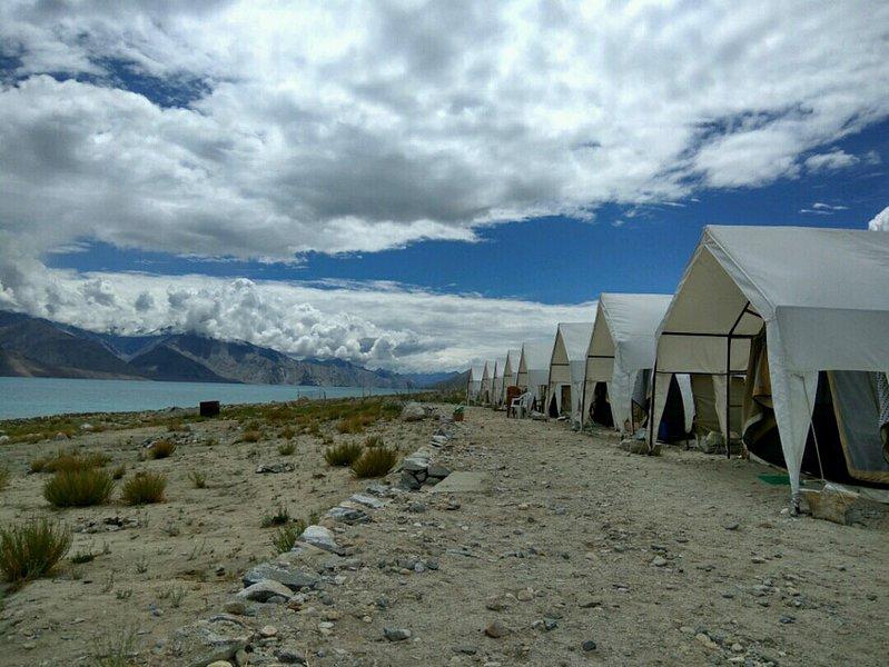 Holiday Shore Camps Pangong Lake View