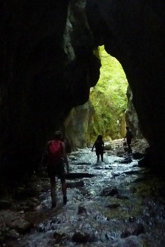 numerous excursions