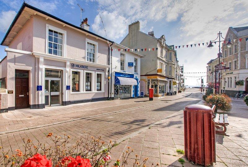 Florin apartment, Seaton, Devon