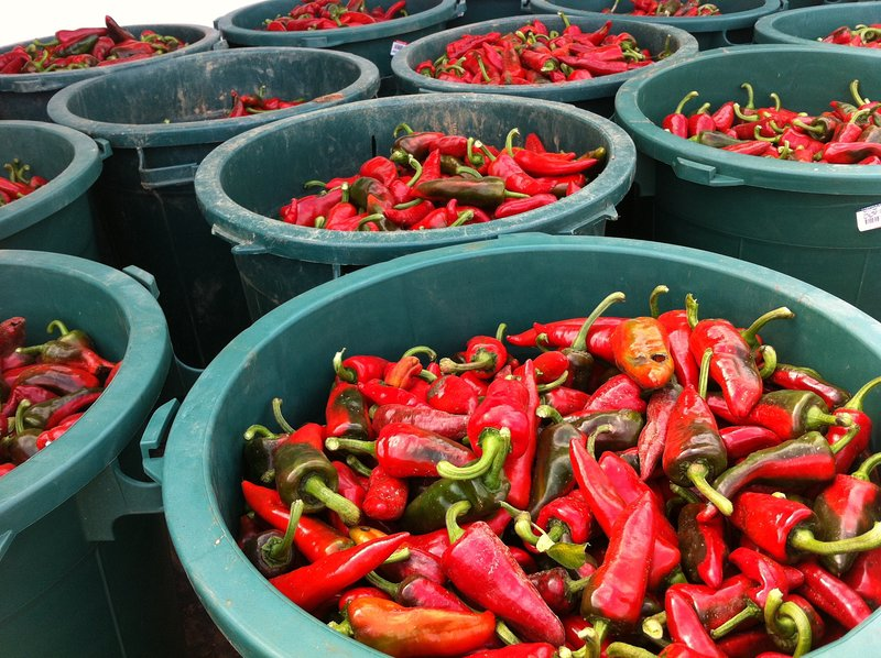 The famous Espelette pepper - an essential ingredient in Basque cuisine