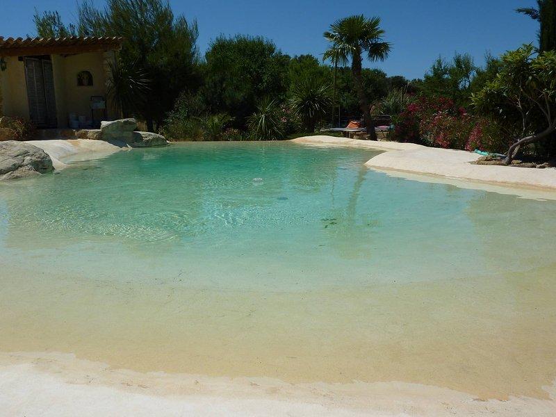 Magnifique villa avec piscine californienne à plage, holiday rental in Rognes