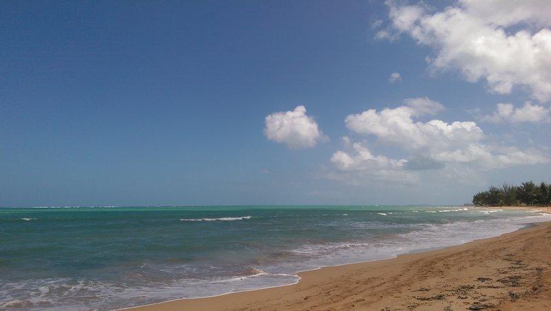 Your Beach!