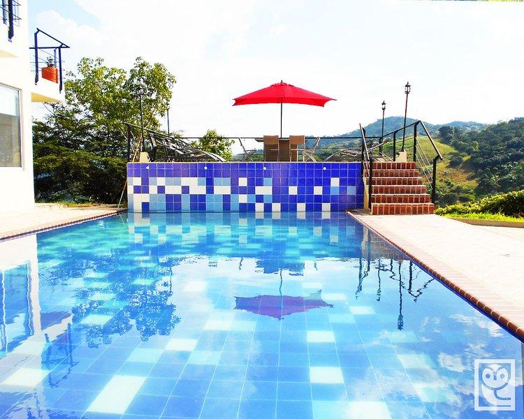 Piscina + terraza piscina