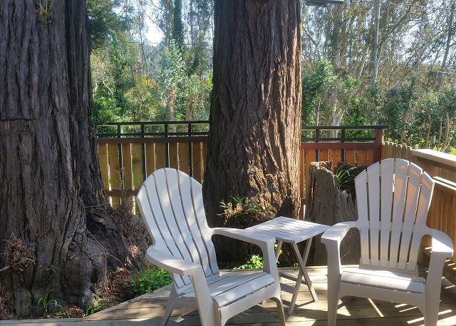 Profitant assis sous les arbres de séquoias sur le pont avant tout en admirant