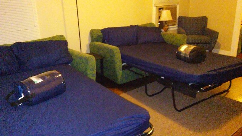 Full size sofa beds in livingroom