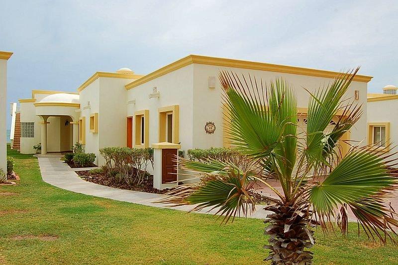 Edificio, palmera, árbol, jardín, patio