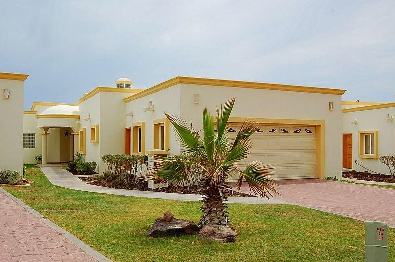 Edificio, árbol, patio, Palmera, Arquitectura