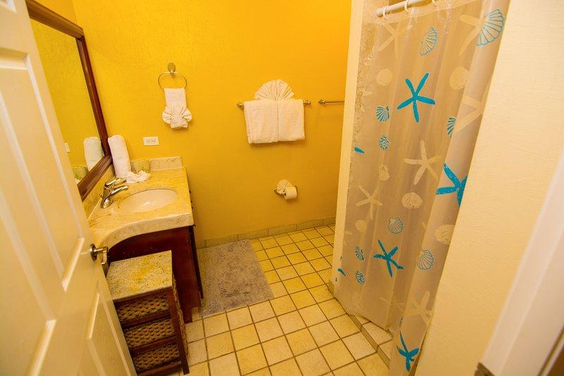 Cuarto de baño de invitados con cabina de ducha Secador de pelo montado en la pared!