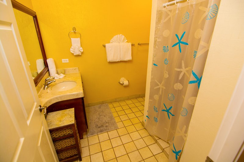 Guest Bathroom w/Walk In Shower! Wall Mounted Hair Dryer!