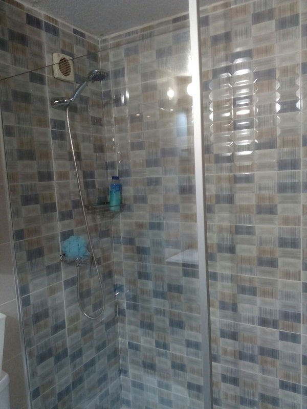 Bathroom with shower and screen.
