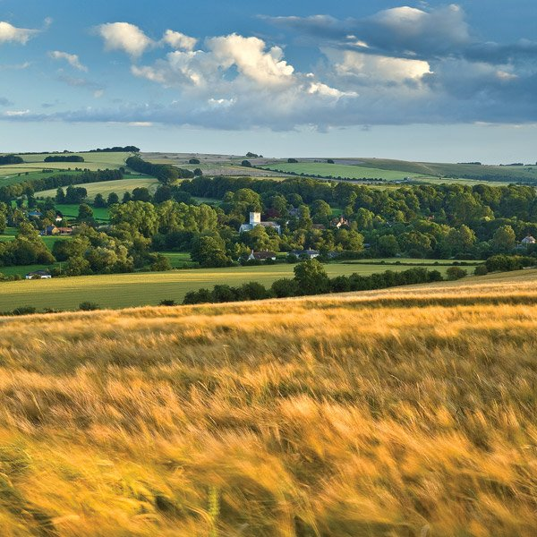 Walk, cycle or drive and enjoy the spectacular views of our Chalke Valley.