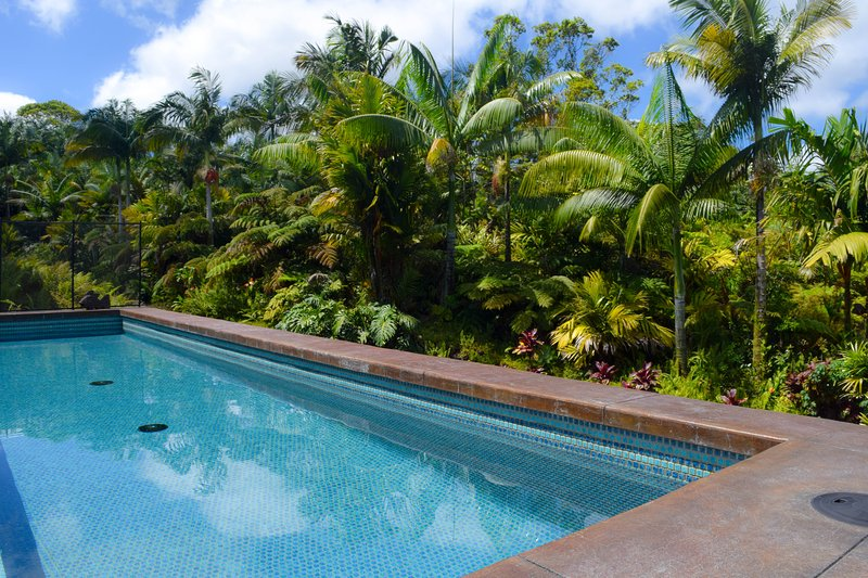 Jake's Jungle Paradise is a beautiful new home with a pool in Leilani Estates